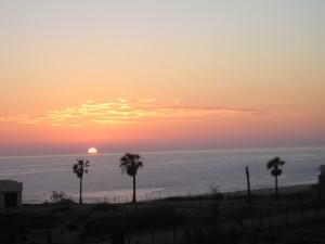 Walter Halicki Sunset in Cabo